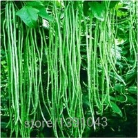 Green loosened bean seed vegetable seed,(20 seeds),Bonsai Seed, fruit and vegetable planting,High budding rate