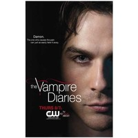 (11x17) The Vampire Diaries - Damon Ian Somerhalder TV Poster