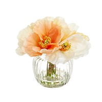 "Peach Cream Silk Poppy Arrangement in Glass Vase - 7"" Tall"