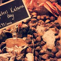 Kitchen Still Life: Oysters, Fine Art Food Photography, Ingredients, Foodie Gift, Sepia Kitchen Art, Canvas or Photo Print