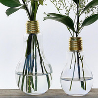Light Bulb Bud Vase Pair - Large and Small Vase, Spring Bouquet, Display your Flower Garden in Style, Rustic Farmhouse Kitchen table Decor,