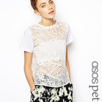 ASOS PETITE Burnout Shell Top With Contrast Sleeves