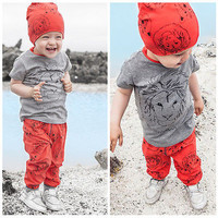 2016 New Fashion Casual Boy Girl Baby Clothes Lion Tops T-shirt + Pants 2pcs Outfits Clothing Set Spring Summer 2 3T 4T 5T 6T 7T