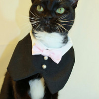 CoolCats Cat Tuxedo with Bow Tie Collar Custom--Match your Wedding Colors
