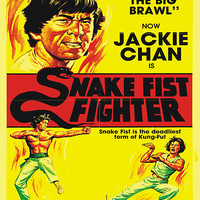 Snake Fist Fighter by OBEY ZOMBIE