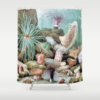 Ocean Life Shower Curtain by Joke Vermeer