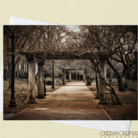Safe Passage - Brooklyn Botanic Gardens Sepia Photography - 4x5.5 Eco Friendly Postcard or Folded Note Card - Fine Art Photography