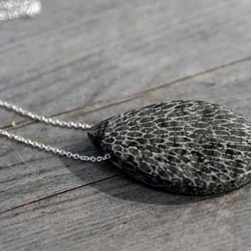 Moroccan Fossilised Bryozoan Coral freeform pendant with 925 Sterling silver chain