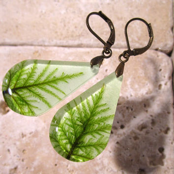 Stair Step Moss (Hylocomium splendens) Teardrop Earrings, woodland, forest, bryophyte, plant jewellery, rustic, Antique bronze