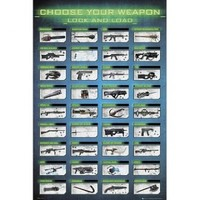 (24x36) Gaming Choose Your Weapon Video Game Poster