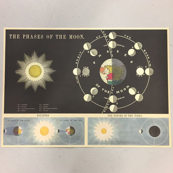 Phases of the Moon Chart Print