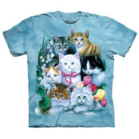 The Mountain Men's  Kittens T-shirt