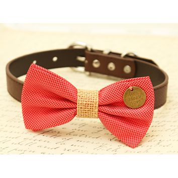 Coral Dog Bow Tie attached to collar, Coral wedding, Country Rustic