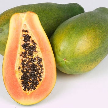 8 Papaya Seeds | Yellow Organge Tatsty Fruit | Tropical Perennial Nutritious Vegetable Home Garden Plant Organic Heirloom non GMO
