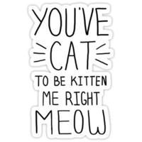 """You've CAT to be KITTEN me right MEOW"" - Slogan T-Shirt"