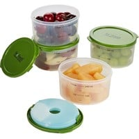 Fresh Starts 1 Cup Chilled Lunch Containers with Removable Ice Packs