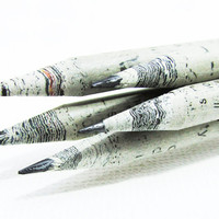 Recycled Newspaper Pencil Set // Paint Dipped in Custom Colors // Back to School Gift