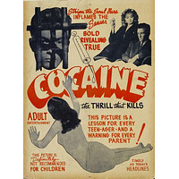 Cocaine The Thrill That Kills Vintage Art Movie Poster 11inx17in
