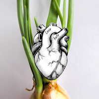 Alternative Valentine's Heart Brooch, Valentine's Day gift, anatomical heart, love and hate, miniature hand drawing, green, black and white