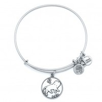 Alex and Ani | Collections | Zodiac