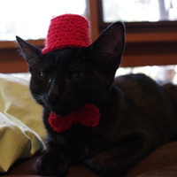 Dr Who Fez Hat And Bow Tie For a Cat
