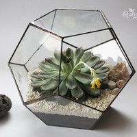Geometric Terrarium / Dodecahedron / Stained Glass Terrarium / Handmade Glass Planter / Stained glass vase