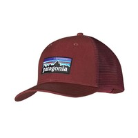 Patagonia P6 Trucker Hat | Rusted Iron