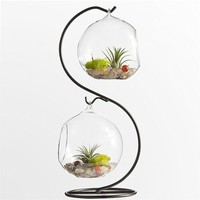 Glass Vase Plant Terrarium with Metal Stand, 2 Globe