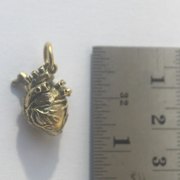 Brass Real Heart Charm on ball chain, 3D yellow Brass Anatomical Heart pendant, Statement necklace, Goth Punk Jewelry, Halloween, Unisex