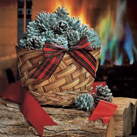 Color Cones that Create Blue and Green Flames in the Fireplace - Plow & Hearth