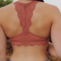 Lady in Lace Bralette - Salmon