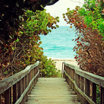 Beach Home Decor Photography Hidden Walkway to the Beach by Beach Bum Chix