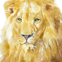 Lion Watercolor Painting - 8 x 10 - Giclee Print Reproduction - African Animal - Nursery Art
