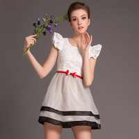 Lace Butterfly Sleeve Mesh Embroidered Belted A-Line Mini Dress