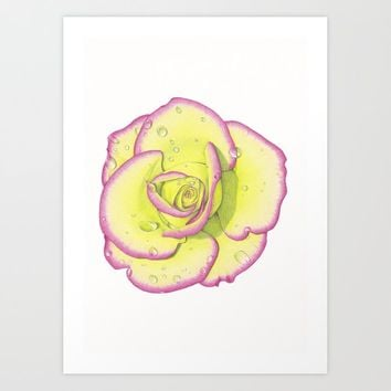 Rose - After the Rain Art Print by drawingsbylam