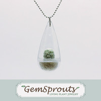 Real Living Tiny Green Thimble Cactus Plant Necklace with Ballchain