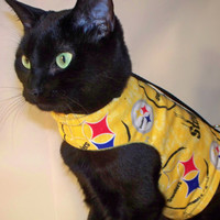 CoolCats NFL Team Logo Cotton Cat Harness-Many Teams Available