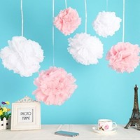 Fonder Mols 12pcs Mixed 3 Sizes White Pink Tissue Paper Pom Poms Flower Wedding Party Baby Girl Room Nursery Decoration