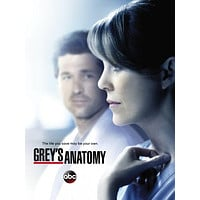 "Greys Anatomy Poster 16""x24"""
