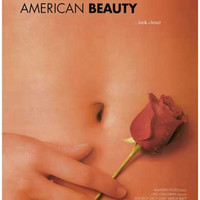 American Beauty Movie Poster 11x17