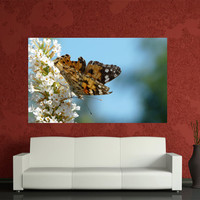 Digital printed Canvas butterfly photo. Home Decoration