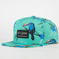 Billabong Toucan Too Mens Snapback Hat Mint One Size For Men 23525352301