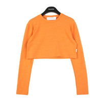 Long-Sleeved Crop T-shirt