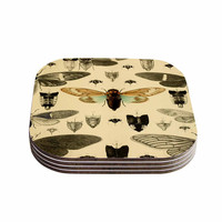 """Suzanne Carter """"Vintage Cicada"""" Bugs Pattern Coasters (Set of 4)"""