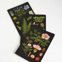 Rustic Plant an Idea Notebook Set by Chronicle Books from ModCloth