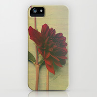 Whispers of Love iPhone & iPod Case by Olivia Joy StClaire