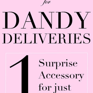 Last Chance Dandy Delivery - One Accessory for $4.95