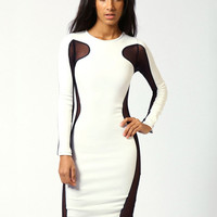Long Sleeve Mesh Embroidered Bodycon Midi Dress