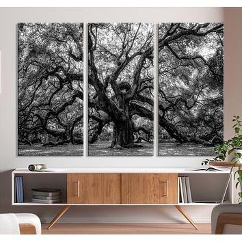 Extra Large Black and White Old Angel Oak Tree Wall Art Canvas Print