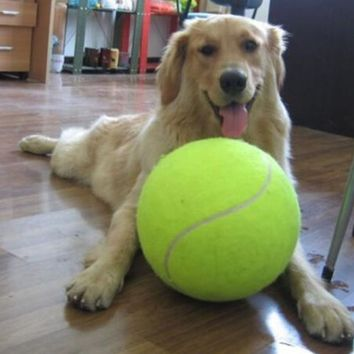Giant Dog/Puppy Tennis Ball Play Toy